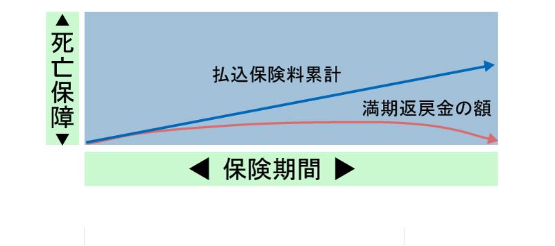 長期定期型死亡保険