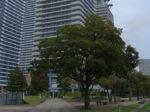 タワーマンションと横浜